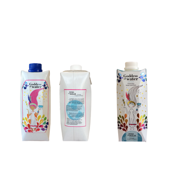 Picture of Branded Tetra Water Carton